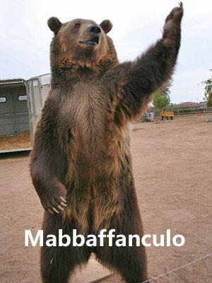 Nome:   bear,forum,utility,mabbaffanculo-6387fa4c60fed0586736aae78e45f539_h.jpg Visite:  58 Grandezza:  35.0 KB