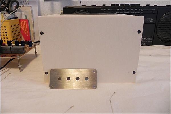 Amplificatore valvolare per cuffie-dscn8635.jpg