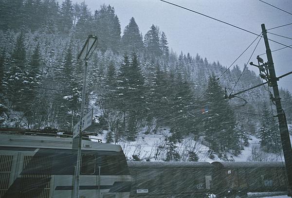 Febbraio - Il freddo-a01348.jpg