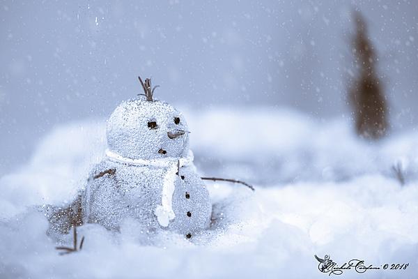 [ShowRoom 2.0] It's Winter Time - Gennaio 2019-_dsc0987-1-copia-.jpg