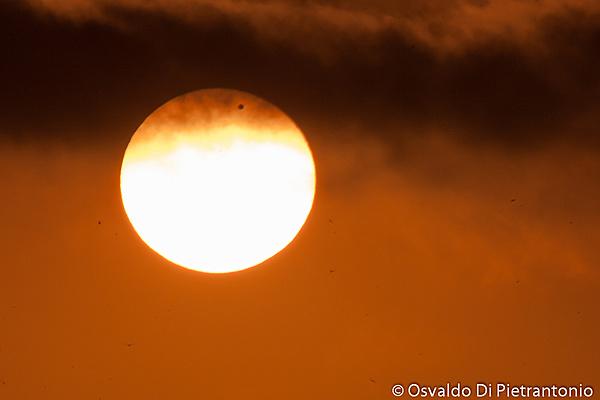 Venus vs Sun-img_9614-2.jpg