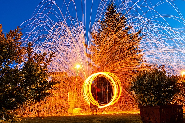 steelwool front yard test-img_8970.jpg