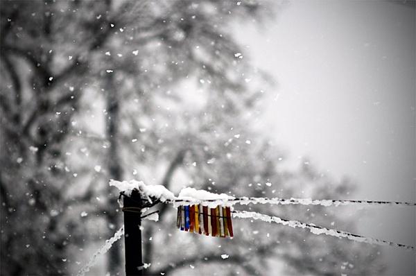 TechArena Photo Contest: Il freddo-11303d1329918905-febbraio-il-freddo-_dsc8617_2.jpg