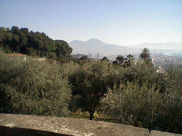 Villa Domi.-hni_0017.jpg