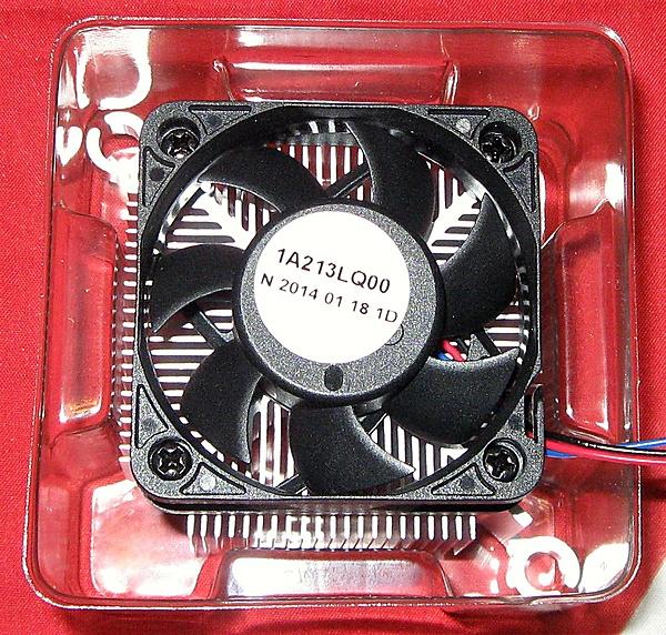 Prova nuova piattaforma AMD AM1-img_1741.jpg