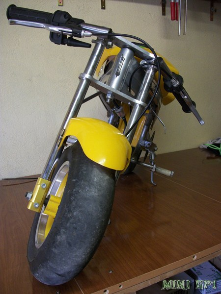 Mini Racer-100_2445-copia-.jpg