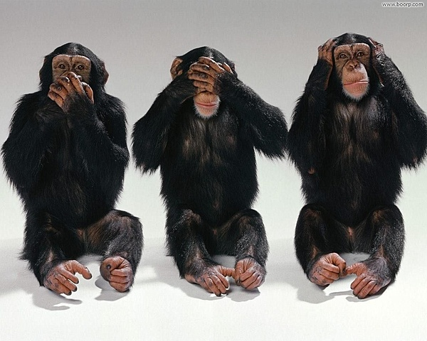 Clicca sull'immagine per ingrandirla  Nome:   le_tre_scimmiette.jpg Visite: 234 Dimensione:   195.1 KB ID: 37017