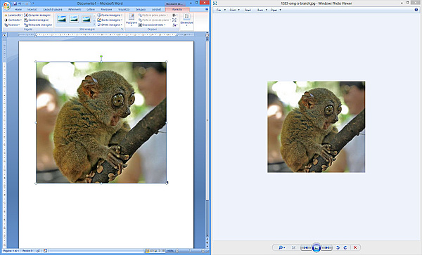 Immagini sfocate nei documenti pdf ...-pdf01.jpg