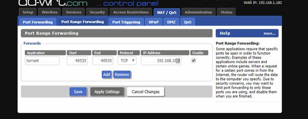 Chiarimento porte nas e router-ddwrt2.png