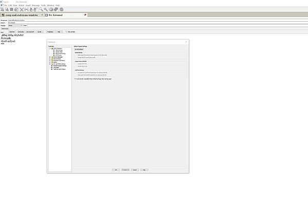 Forte Agent mostra i pannelli troppo piccoli con monitor 4K.-agent.jpg