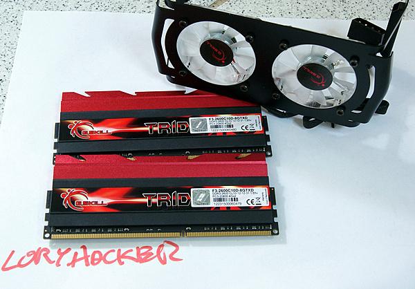 (CA+SP) G.skill TridentX 2x4 GB 2600 MHz CL10 (F3-2600C10D-8GTXD)-dsc03719.jpg